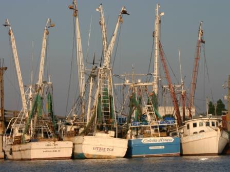 Fishing Boats at Chincoteague