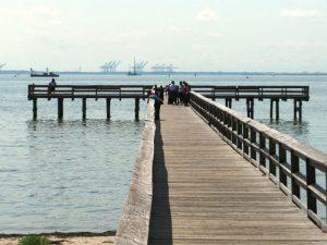King Lincoln Park Pier
