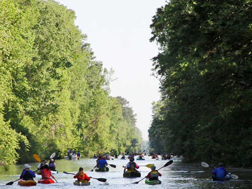 Dismal Swamp Canal paddle for the border